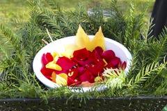 Feuilles de fleur à un enterrement Photos libres de droits