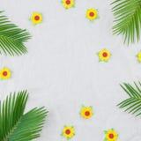 Feuilles de fougère et fleurs de papier jaunes Images libres de droits