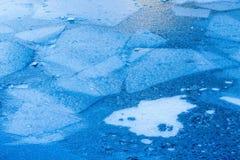 Feuilles de glace Photo stock