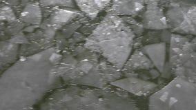 Feuilles de glace sur l'eau banque de vidéos