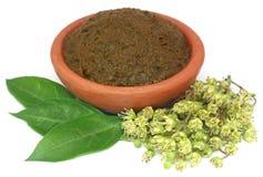 Feuilles de henné d'Ayurvedic avec les fleurs et la pâte images stock