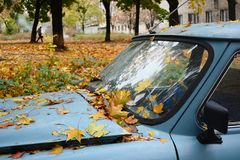 Feuilles de jaune sur la vieille rétro voiture Images stock