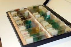 Feuilles de microscope photo stock