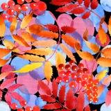 Feuilles de modèle de viburnum dans un style d'aquarelle Photo libre de droits