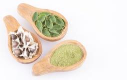Feuilles de Moringa et graines - moringa oleifera Photographie stock