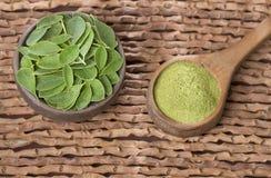 Feuilles de Moringa et poudre - moringa oleifera Photo stock