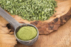 Feuilles de Moringa et poussière - moringa oleifera Photo stock