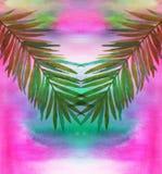 Feuilles de palmier sur le fond d'aquarelle Photo libre de droits