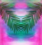 Feuilles de palmier sur le fond d'aquarelle Photos stock