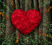 Feuilles de rouge de jour de valentines illustration stock