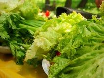 Feuilles de salade verte Image libre de droits