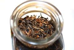 Feuilles de thé Photo libre de droits