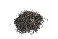Feuilles de thé Images stock