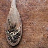 Feuilles de thé blanches de clair de lune sur une cuillère Image libre de droits
