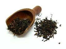 Feuilles de thé desserrées Photo libre de droits