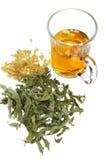 Feuilles de thé et boisson vertes Photo libre de droits