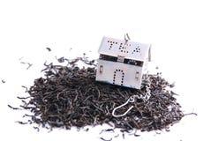 Feuilles de thé et petite maison Photographie stock