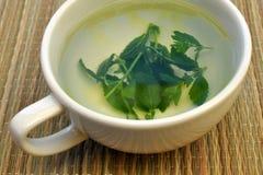 Feuilles de thé et tasse Images stock