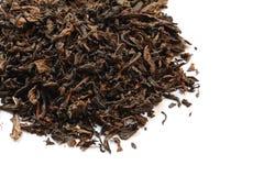 Feuilles de thé sèches Image libre de droits