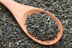 Feuilles de thé vertes sèches sur une cuillère en bois Photos libres de droits
