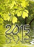 2015, feuilles de vert Image libre de droits