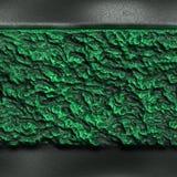 Feuilles de vert au sol Photos libres de droits