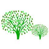 Feuilles de vert d'arbres de verger Photos libres de droits