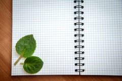 Feuilles de vert dans le carnet ouvert Image libre de droits