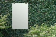 Feuilles de vert de la carte 3d de papier blanc Photographie stock libre de droits