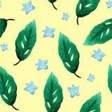 Feuilles de vert de modèle de fleurs d'aquarelle Photo stock