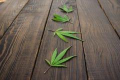 Feuilles des cannabis sur la surface en bois foncée Plan rapproché photographie stock