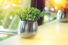 Feuilles en plastique de petit arbre dans le vase en aluminium sur la table photos stock