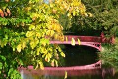 Feuilles et pont d'automne Images libres de droits