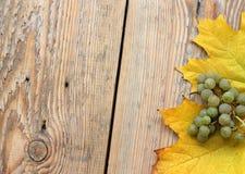 Feuilles et raisins d'érable sur la texture en bois Images libres de droits