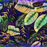Feuilles exotiques - Morant Fond d'image d'aquarelle - composition décorative Employez les matériaux imprimés, signes, articles,  Photo stock