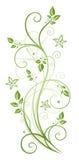 Feuilles, fleurs, ressort Photos libres de droits