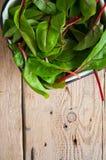Feuilles fraîches de betterave fourragère sur un fond en bois Photo libre de droits