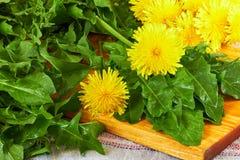 Feuilles fraîches de pissenlit avec des fleurs sur la planche à découper photo libre de droits