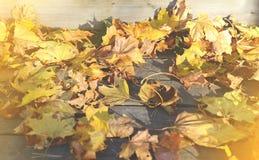 Feuilles jaunes d'érable avec le fond en bois Image libre de droits