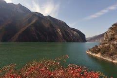 15 feuilles les Etats-Unis Three Gorges pittoresque Images libres de droits