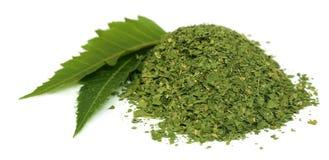Feuilles médicinales de neem avec la poudre sèche Images stock