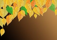Feuilles multicolores d'automne sur un fond foncé photo stock