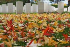 Feuilles multicolores tombées sur l'herbe avec les pierres tombales brouillées d'un cimetière de guerre de Commonwealth sur le fo image stock