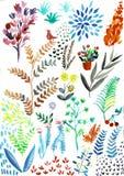 Feuilles peintes ? la main et fleurs exotiques de collection de heliconia d'aquarelle d'isolement sur le fond blanc illustration libre de droits