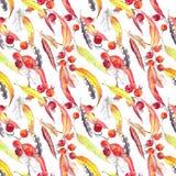 Feuilles, plumes, baies Configuration sans joint d'automne watercolor Image stock