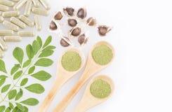 Feuilles, poudre, capsules et graines fraîches de moringa - moringa oleifera Photographie stock