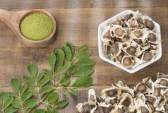 Feuilles, poudre et graines fraîches de moringa - moringa oleifera Photos libres de droits