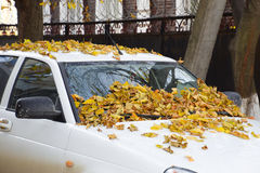Feuilles sèches de jaune sur la voiture Automne de lame d'automne Photographie stock