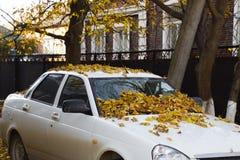 Feuilles sèches de jaune sur la voiture Automne de lame d'automne Images libres de droits