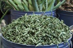 Feuilles sèches de rebaudiana de Stevia photos libres de droits